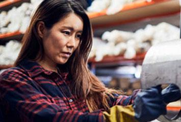 Apprenticeship & Union Trades