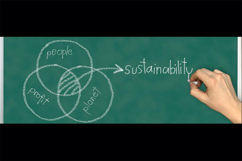 Students learn about the Triple Bottom Line in a wide range of disciplines