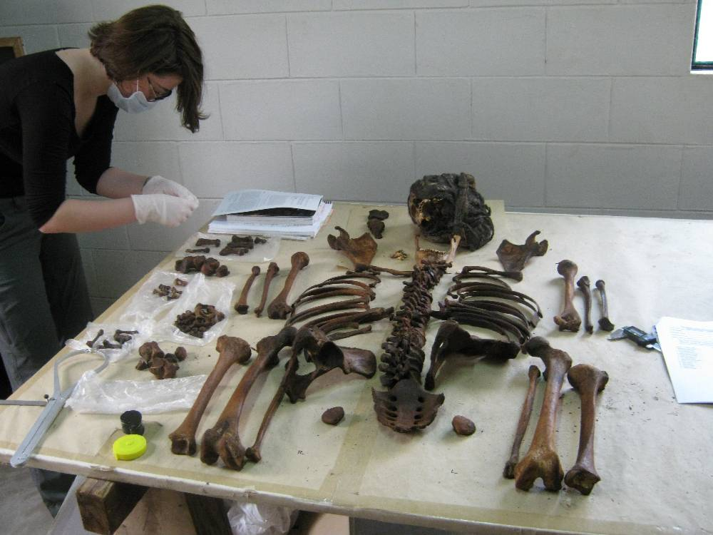 One of the anthropology students  studies a bone during the process of setting the remains in Standard Anatomic Position (SAP).