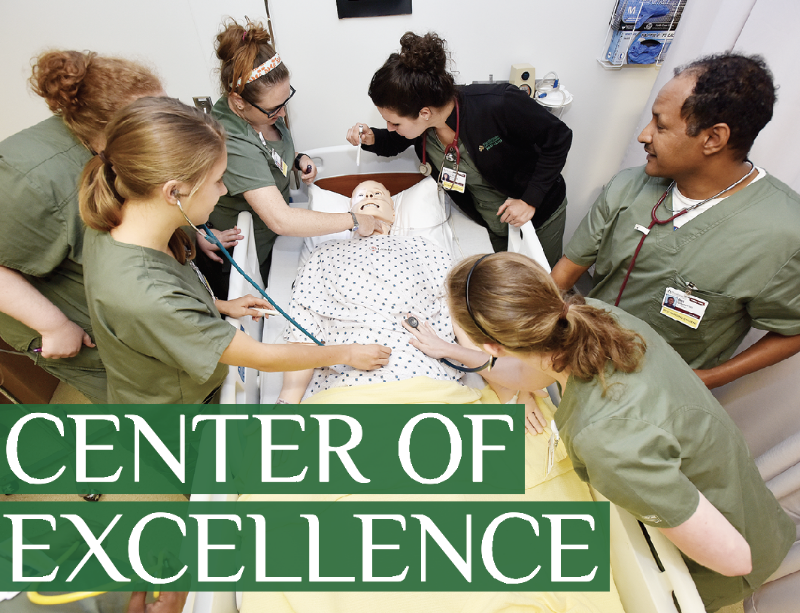 Nursing Center of Excellence