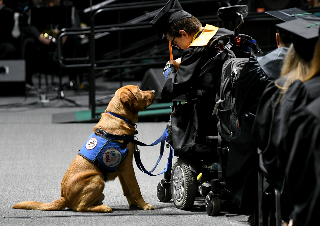 student and support dog at convocation